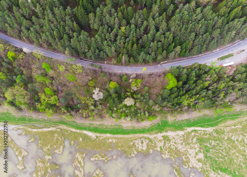 Foto op Plexiglas Groene road and pond in forest. aerial view landscape, Romania