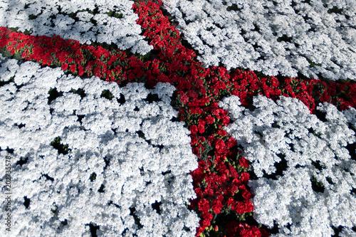 Obraz na plátně saint george flag red cross on white made of flowers