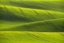 Moravian Tuscany – Beautiful...
