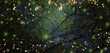 Leinwanddruck Bild - Abstract and magical image of Firefly flying in the night forest. Fairy tale concept.