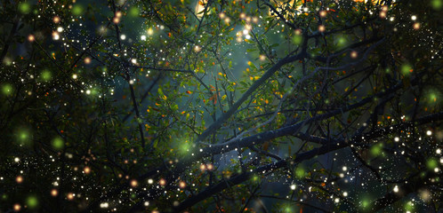 Abstract and magical image of Firefly flying in the night forest. Fairy tale concept.