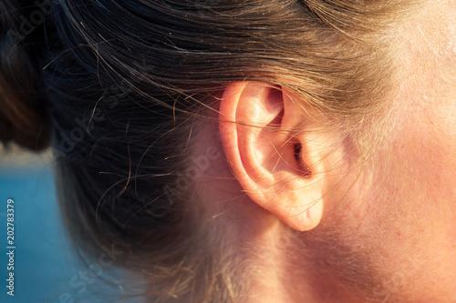 Fotografie, Tablou ear of a happy woman with a beautiful earring