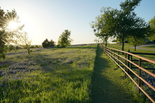 View Along Texas Bluebonnets Trail During Spring Time Around The Texas Hill Country
