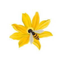 Bee Pollinating Beautiful Flow...