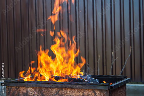Brazier with burning fire wood Canvas Print