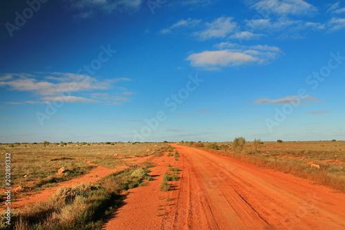 Foto op Aluminium Oranje eclat Australian desert track