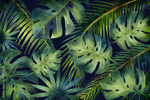 Watercolor vector banner tropical leaves and branches isolated on dark background Canvas Print