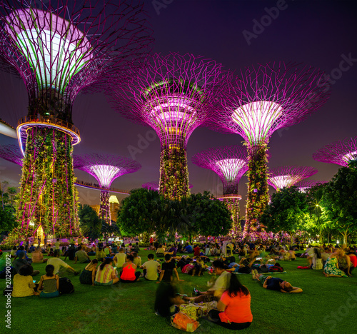 Singapore Night Skyline at Gardens by the Bay. SuperTree Grove Poster