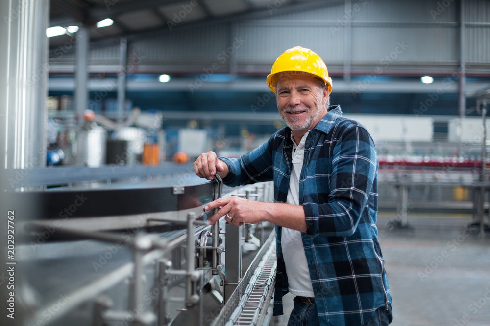 Fototapeta Portrait of smiling factory worker near production line