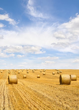 Field With Straw Bales After H...