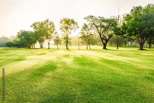 Foto auf Gartenposter Pistazie Scenery green golf and meadow with sunbeam in morning, Wonderful sunbeam at the natural park, Scenery fairway with trees and green grass field