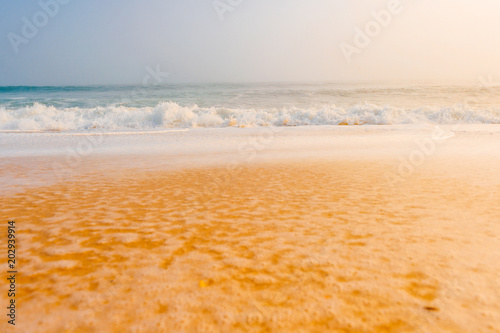 Picturesque scenery seascape of foggy misty abandoned wild beach Poster