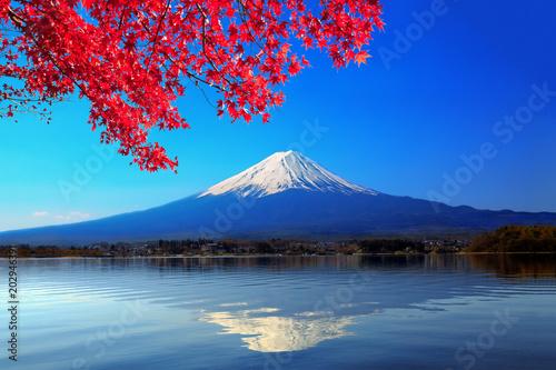 Wall Murals Photo of the day 冠雪した逆さ富士と紅葉したカエデ