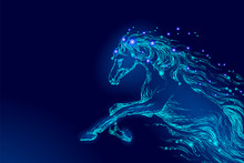 Blue Glowing Horse Riding Nigh...