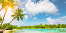 Tranquil Tropical Island With ...