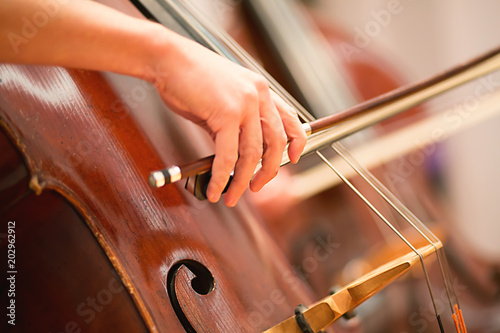 Cello player performing in a symphony orchestra Fotobehang