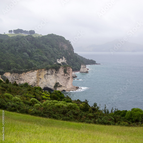 Foto op Canvas Cathedral Cove Neuseeland, Sommer, Uralub, Natur