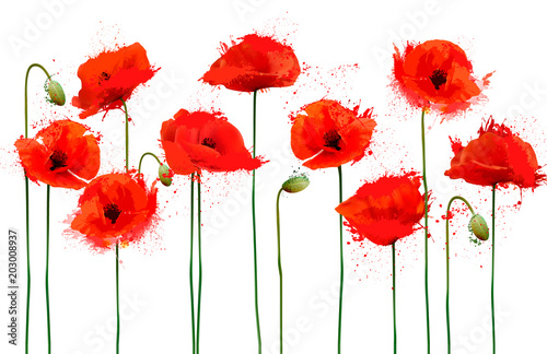 Abstract beautiful background with red poppies flowers. Vector.