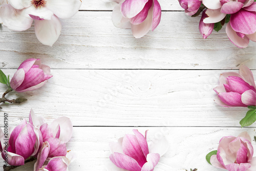 Foto op Plexiglas Magnolia Creative layout made with pink magnolia flowers on white wooden background. Flat lay. top view