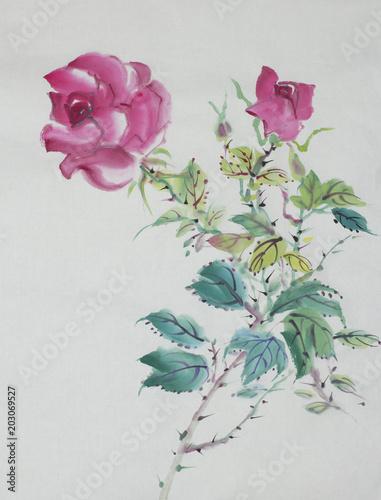 rysunek róży krzewów