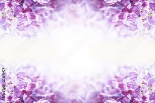 Foto op Canvas Lilac Romantic floral background with purple or violet lilac flowers