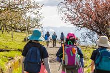 ハイキングする人々