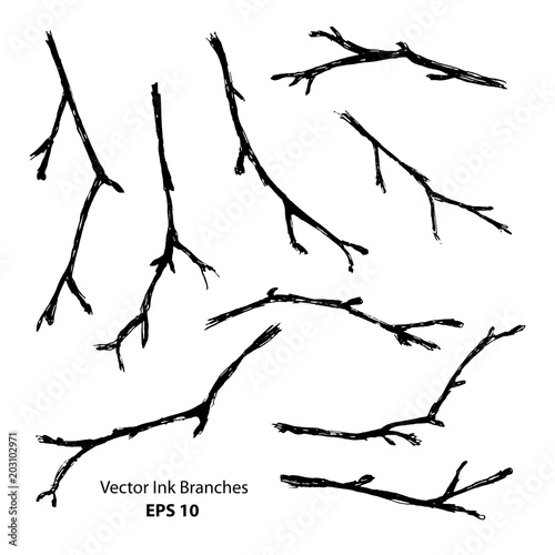 Fotografia  Black ink hand painted stylized branches