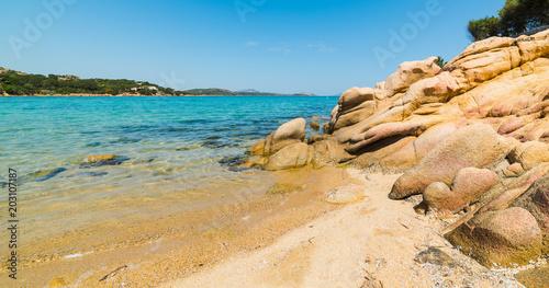 Zdjęcie XXL czysta woda w Cala Girgolu