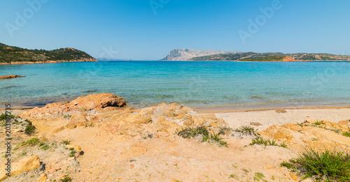 Zdjęcie XXL skały przy linii brzegowej Capo Coda Cavallo