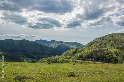 Foto op Canvas Pistache beautiful soft focus forest nature mountain landscape
