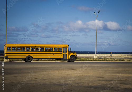 photograph of a very old school bus, from the 60s, crossing a highway that is next to the sea Wallpaper Mural