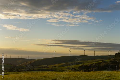 Fotobehang Wit wind farm at sunrise