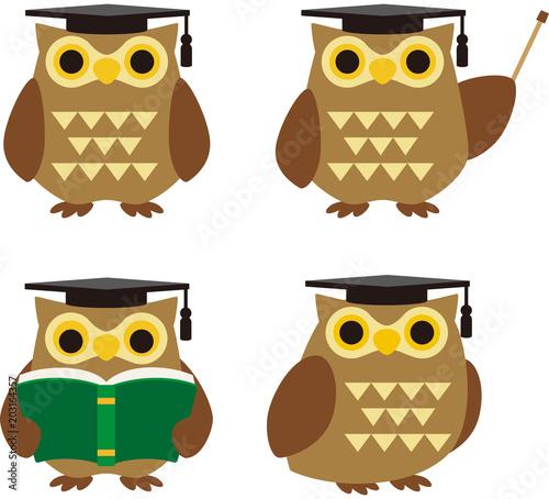 Tuinposter Uilen cartoon フクロウのキャラクター4種類セット