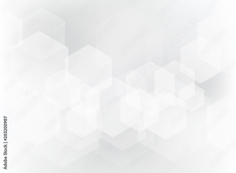 Fototapety, obrazy: Abstract geometric hexagon overlay pattern on white and gray background.