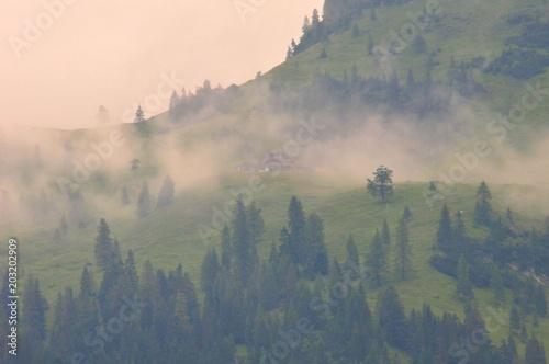 Poster Morning with fog Gebirge Hochgebirge Landschaft Berge Nebel