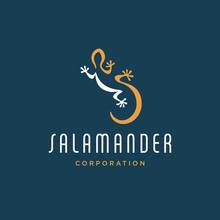 Salamander Logo Concept Design...