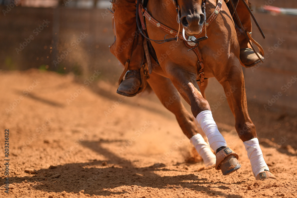Fototapety, obrazy: The rider on a reining horse slides to a stop in the red clay an arena.