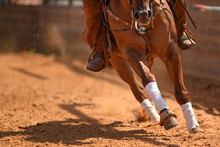 The Rider On A Reining Horse S...