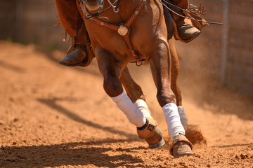 The front view of a rider on a reining horse galloping in the red clay an arena.