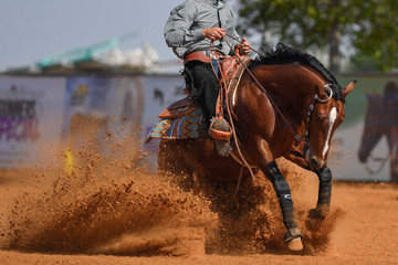 The side view of a rider in cowboy chaps and boots on a horseback stopping the horse in the dust.