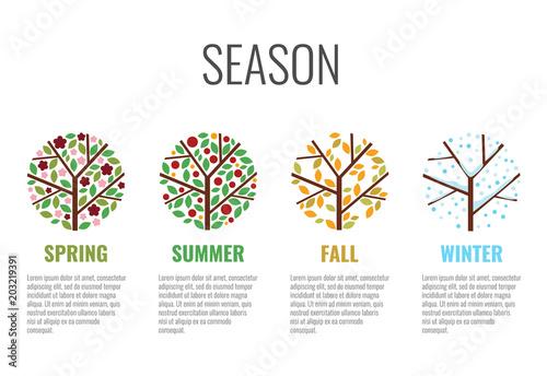 Fotografie, Obraz  four season circle sign with tree season change in spring summer fall (autumn) w