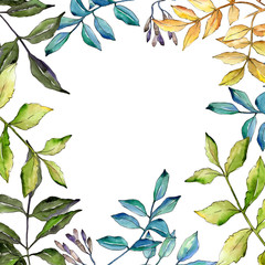 Naklejka Liście Ash leaves in a watercolor style frame. Aquarelle leaf for background, texture, wrapper pattern, frame or border.
