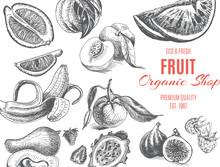 Vector Illustration Sketch - Fruits. Card Organic Shop. Vintage Design Template, Banner.