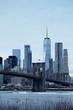 Cityscape with Brooklyn Bridge and Lower Manhattan skyline, New York, USA