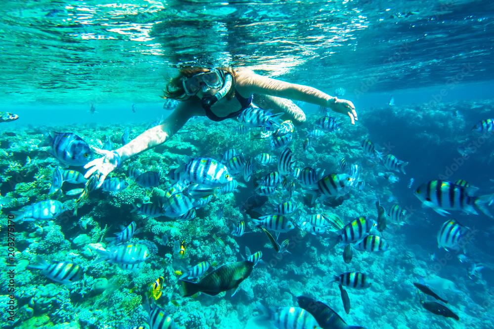 Fototapeta Girl in snorkeling gear dives into the sea