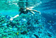 Girl In Snorkeling Gear Dives ...