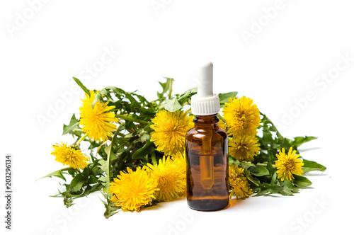 Fototapeta Dandelion flowers and essential oil isolated obraz