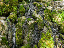 Moss And Grass, Water Flowing Over Rocks