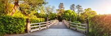 Kyoto Gyoen National Garden, Japan. Beautiful Park With Bridge In Spring