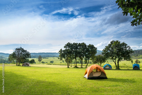 Obraz Camp site in the forest, campground at Tung Saleang Luang National Park, Thailand - fototapety do salonu